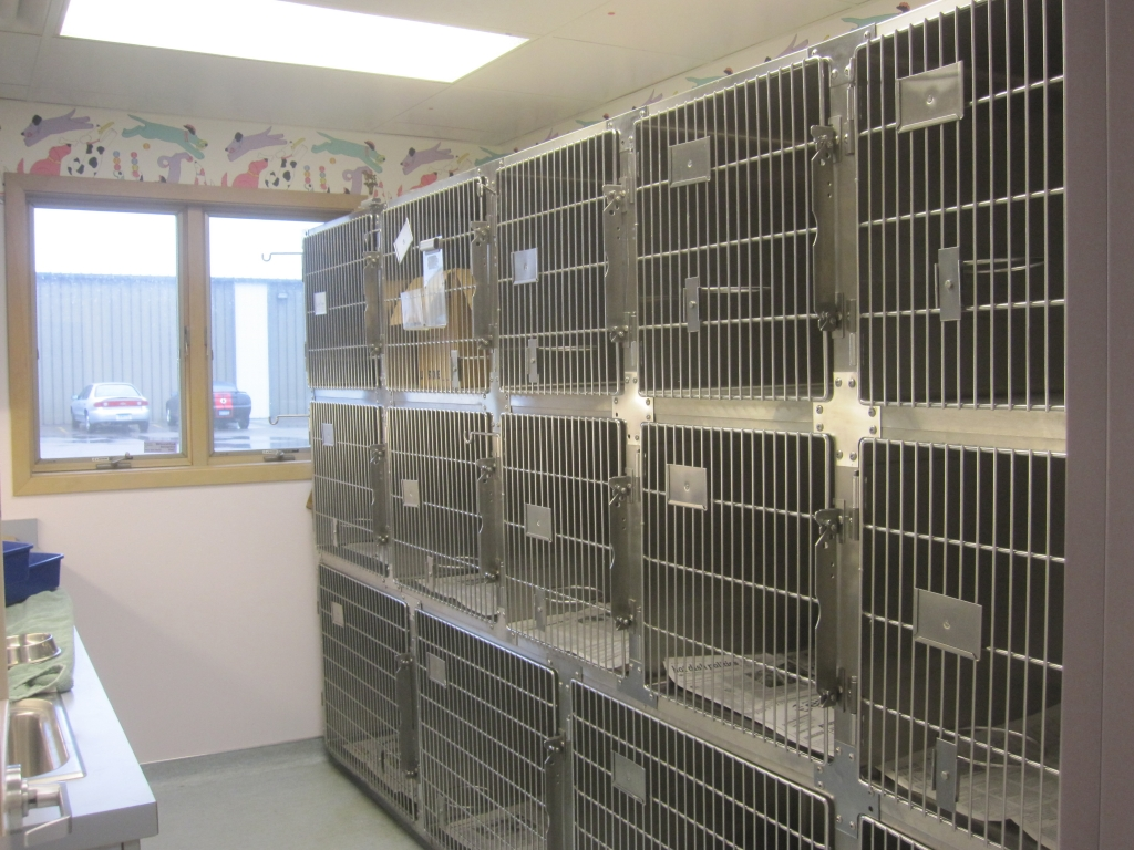small dog kennel area
